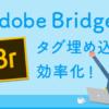 Adobe Bridgeでタグ管理